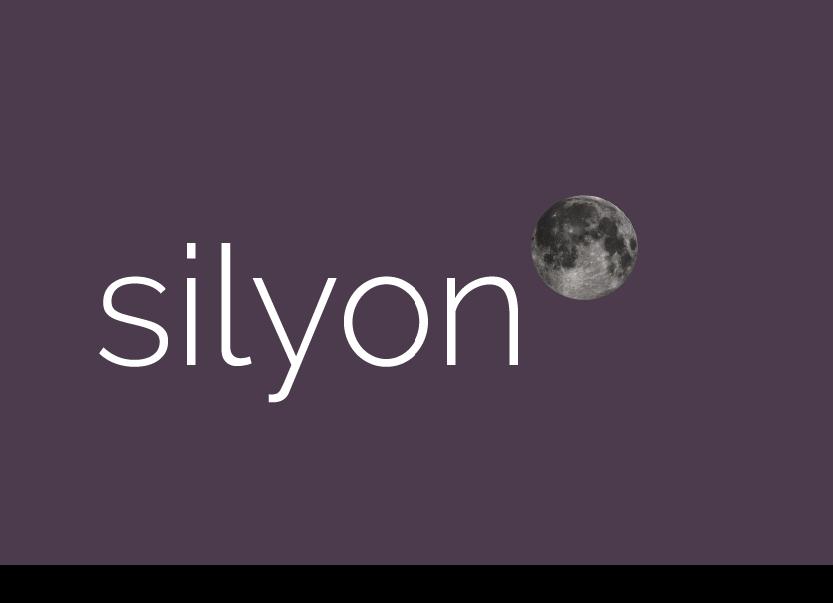 Appeler le service clientèle Silyon Consulting
