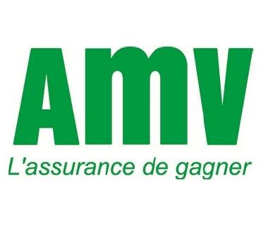 Télephone information entreprise  AMV Assurance