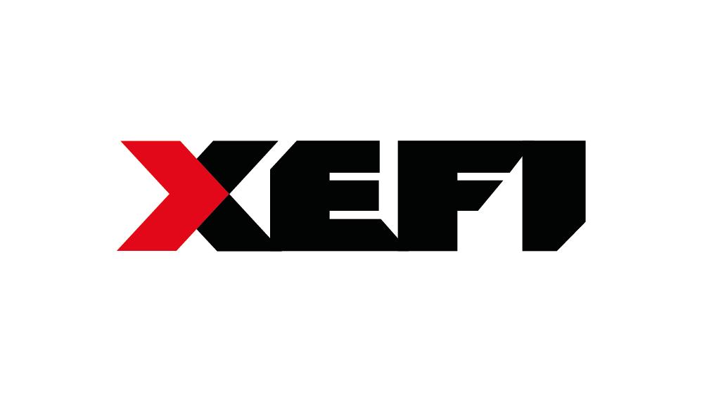 Télephone information entreprise  Xefi