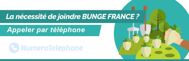 Numéro de téléphone Bunge France